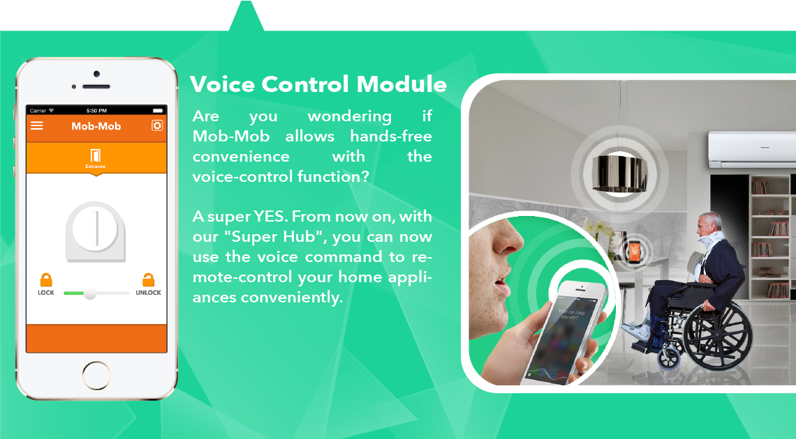 Voice Control  Page